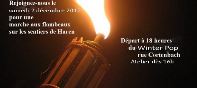 Marche aux Flambeaux 2017 Fakkeltocht 2-12-2017 18h