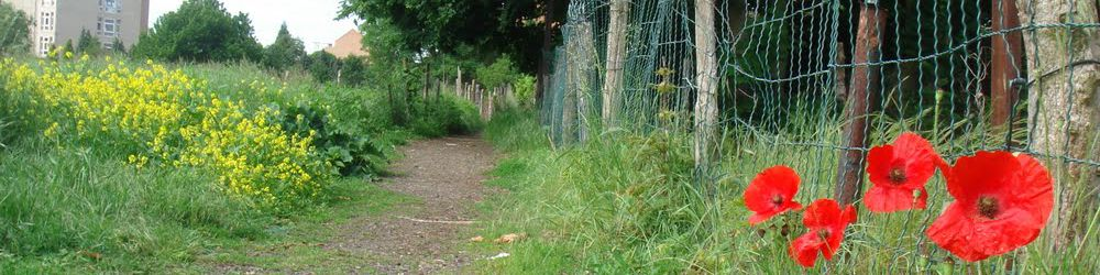 Sentier Keelbeek